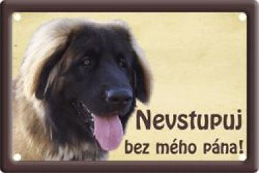 Leonberger 2