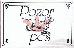 Pozor pes - Jazvečík
