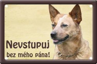 Ceduľka Australský honácký pes 2