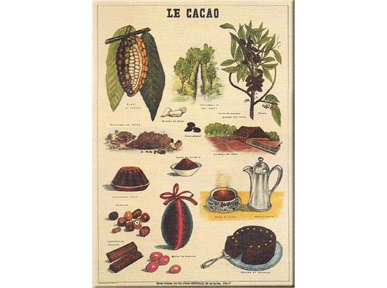 Plechová ceduľa Le cacao - kakao