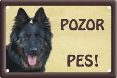 Chodský pes 1